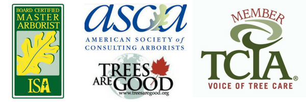 Texas Tree Team- Proud member of tree service organizations for safety and quality
