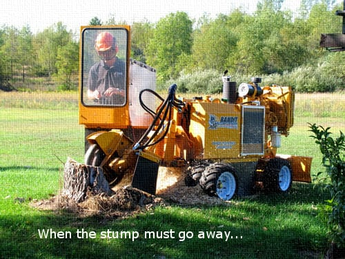 Stump Grinding - Tree Service in Houston