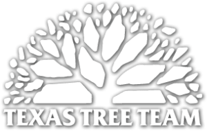 Texas Tree Team- Arborist - Tree Service